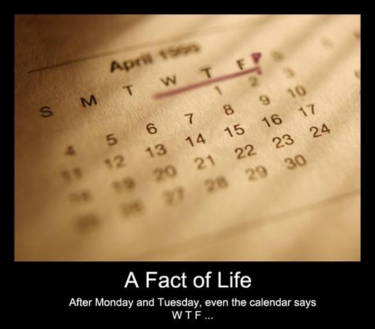 CalendarWTF.jpg
