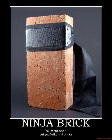 ninjabrickshitbricksninjademotivationalposter1233602361.jpg
